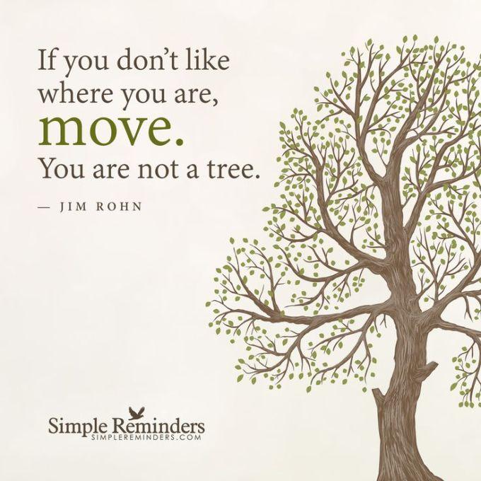 jim rohn tree